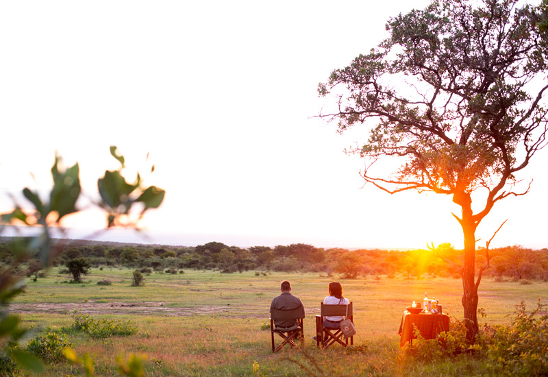 South African Sundowners at The Ant Collection