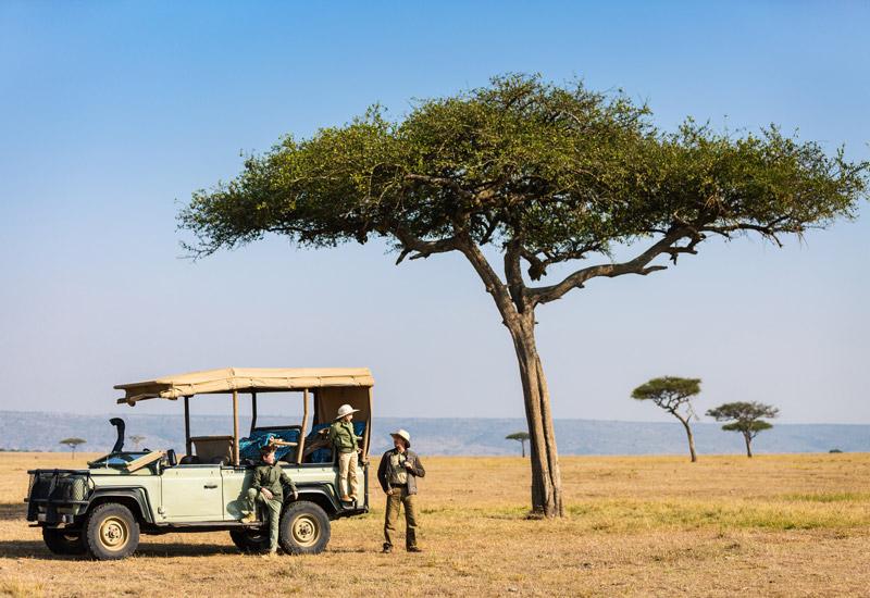african safari lodge website design