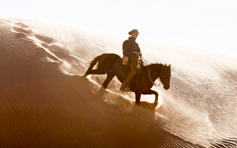 namibia horse safaris