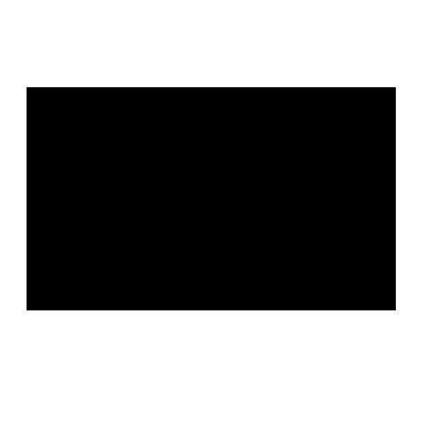 Lewa-Logo